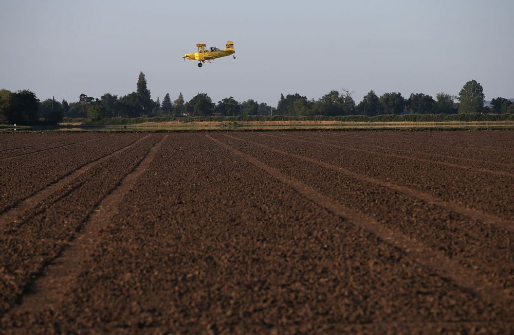 A bi-plane from Williams Ag Service flies over an unplanted rice field on May 8, 2015 in Biggs, California. (Justin Sullivan/Getty Images)