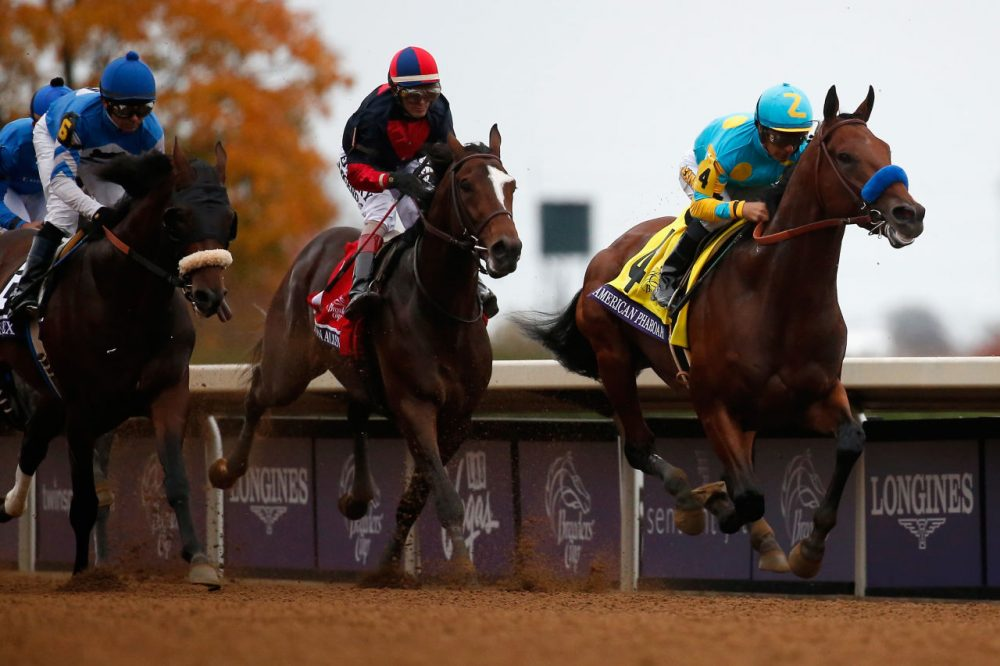 Jockey  Victor Espinoza rides American Pharoah # 4 into the first turn enroute to winning the Breeders' Cup Classic at Keeneland Racecourse on October 31, 2015 in Lexington, Kentucky.  (Rob Carr/Getty Images)