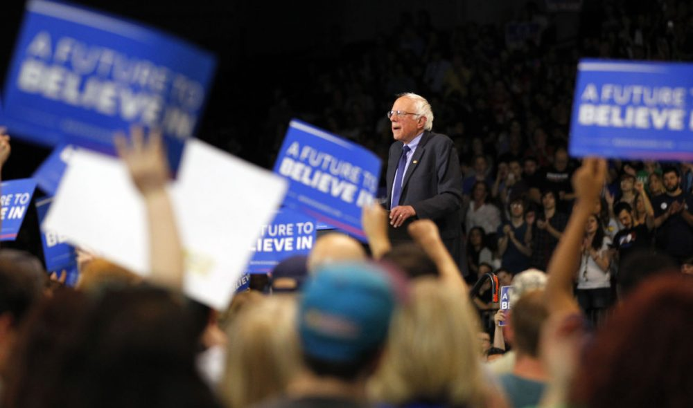 Democratic presidential candidate Bernie Sanders addresses the crowd during a campaign rally at the Big Sandy Superstore Arena,  April 26, 2016 in Huntington, West Virginia. Sanders is preparing for West Virginia's May 10th primary.  (John Sommers II/Getty Images)