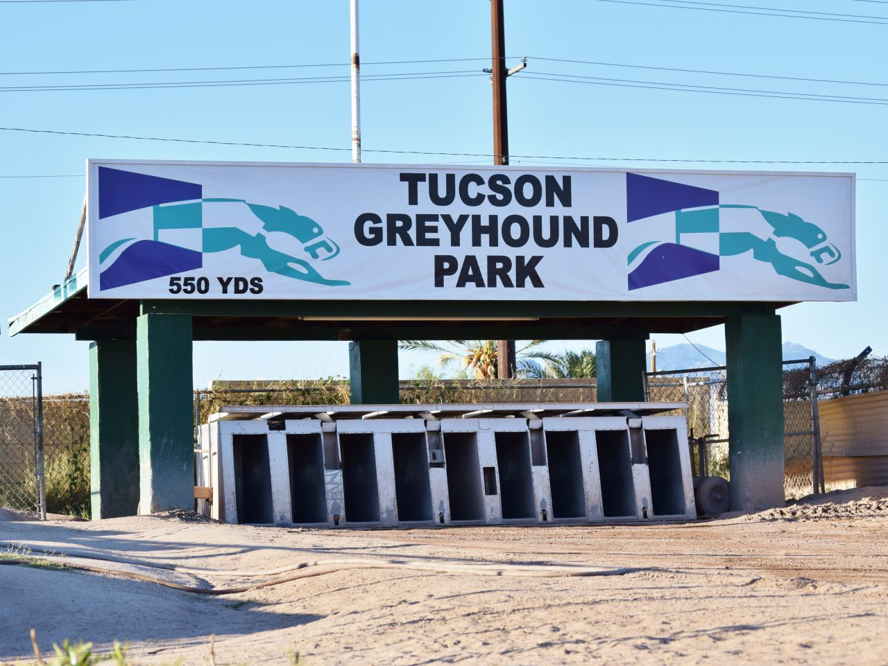 The starting boxes at the Tucson Greyhound Park (Jimmy Jenkins/KJZZ)