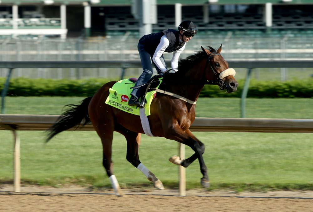 Suddenbreakingnews is hoping to make headlines at Churchill Downs this weekend. (Photo by Andy Lyons/Getty Images)