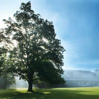 Tanglewood lawn and shed. (Courtesy of John Ferrilo/Boston Symphony Orchestra)