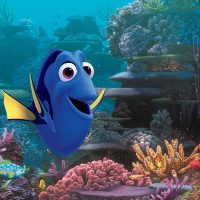 """Finding Dory."" (Courtesy Disney•Pixar)"