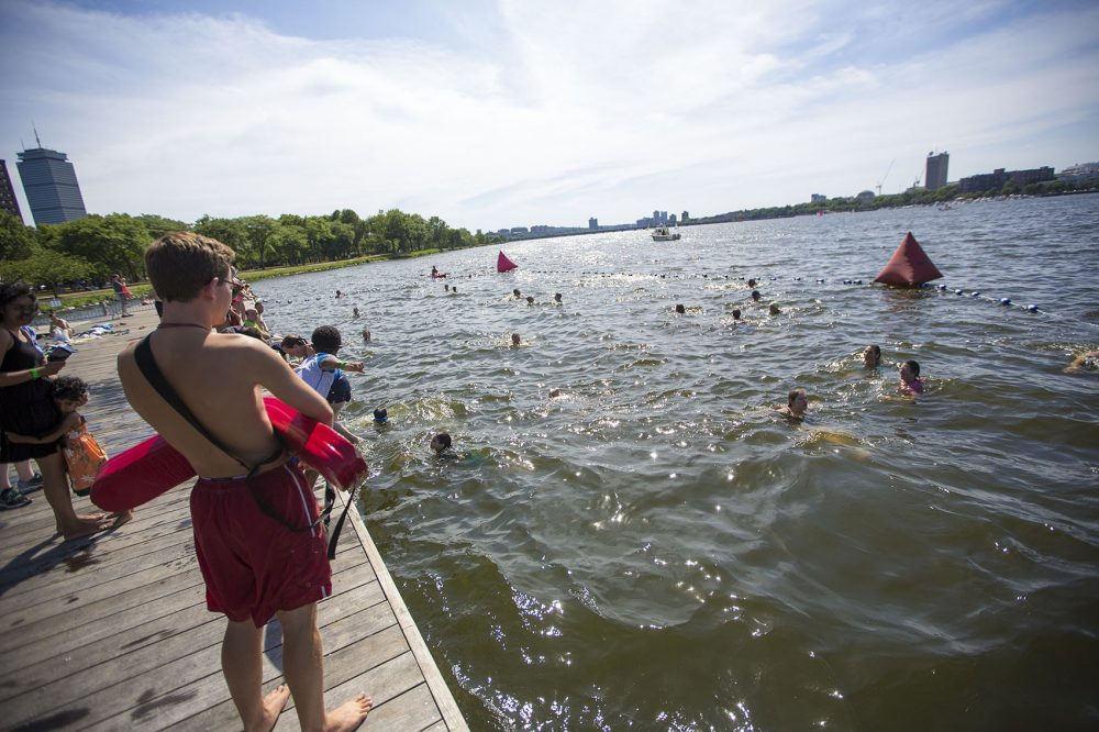 People swimming in the Charles River at a City Splash event in July 2016. (Jesse Costa/WBUR)