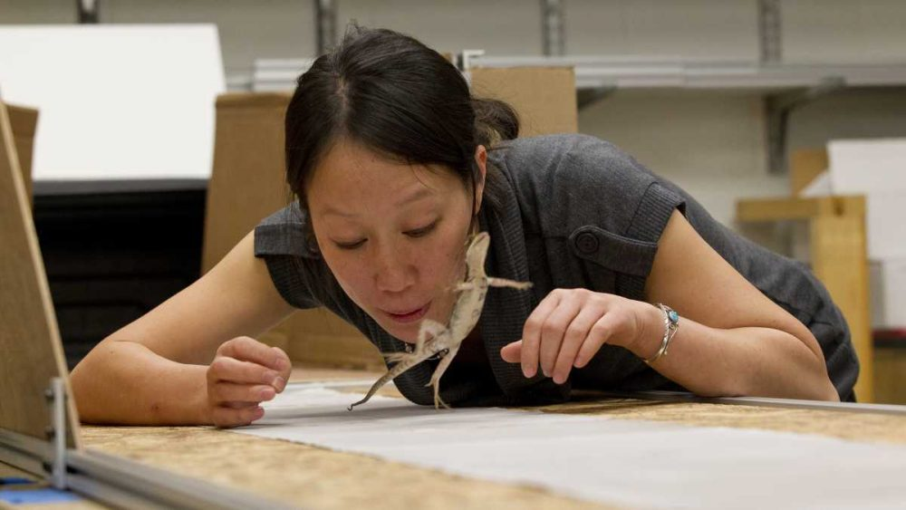 Tonia Hsieh at work in her Temple University lab. (Courtesy of Temple University)