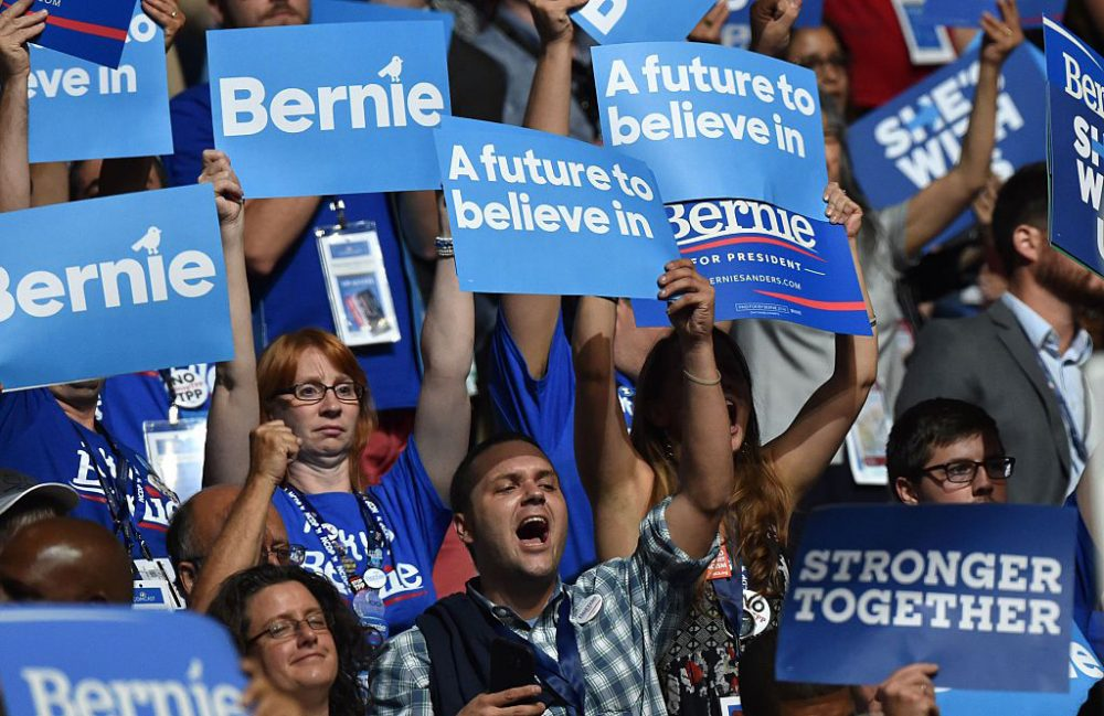 Supporters of Vermont Senator and former Democratic presidential candidate Bernie Sanders cheer on Day 1 of the Democratic National Convention at the Wells Fargo Center in Philadelphia, Pennsylvania, July 25, 2016.  (Nicholas Kamm /AFP/Getty Images)