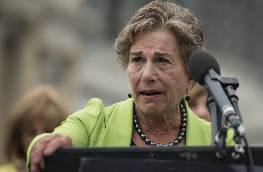 Congresswoman Jan Schakowsky speaks at an event at the United States Capitol on July 12, 2016 in Washington, D.C.  (Leigh Vogel/Getty Images for MoveOn.org)