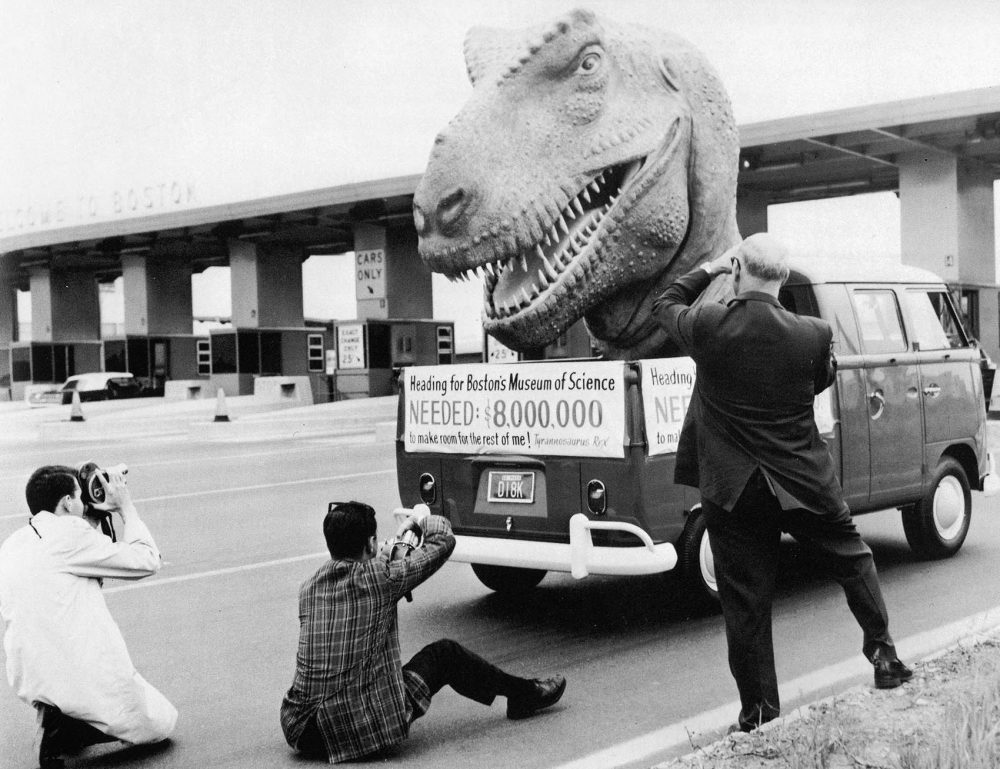The Tyrannosaurus rex head on the back of a flatbed truck, touring around Greater Boston in 1966 to raise funds for the museum's building. (Courtesy Museum of Science, Boston)