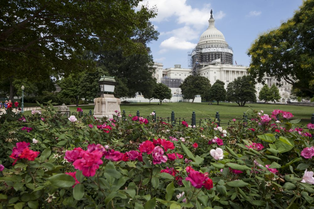 This June 16, 2016 photo shows an exterior view of the Capitol Building in Washington. (J. Scott Applewhite/AP)