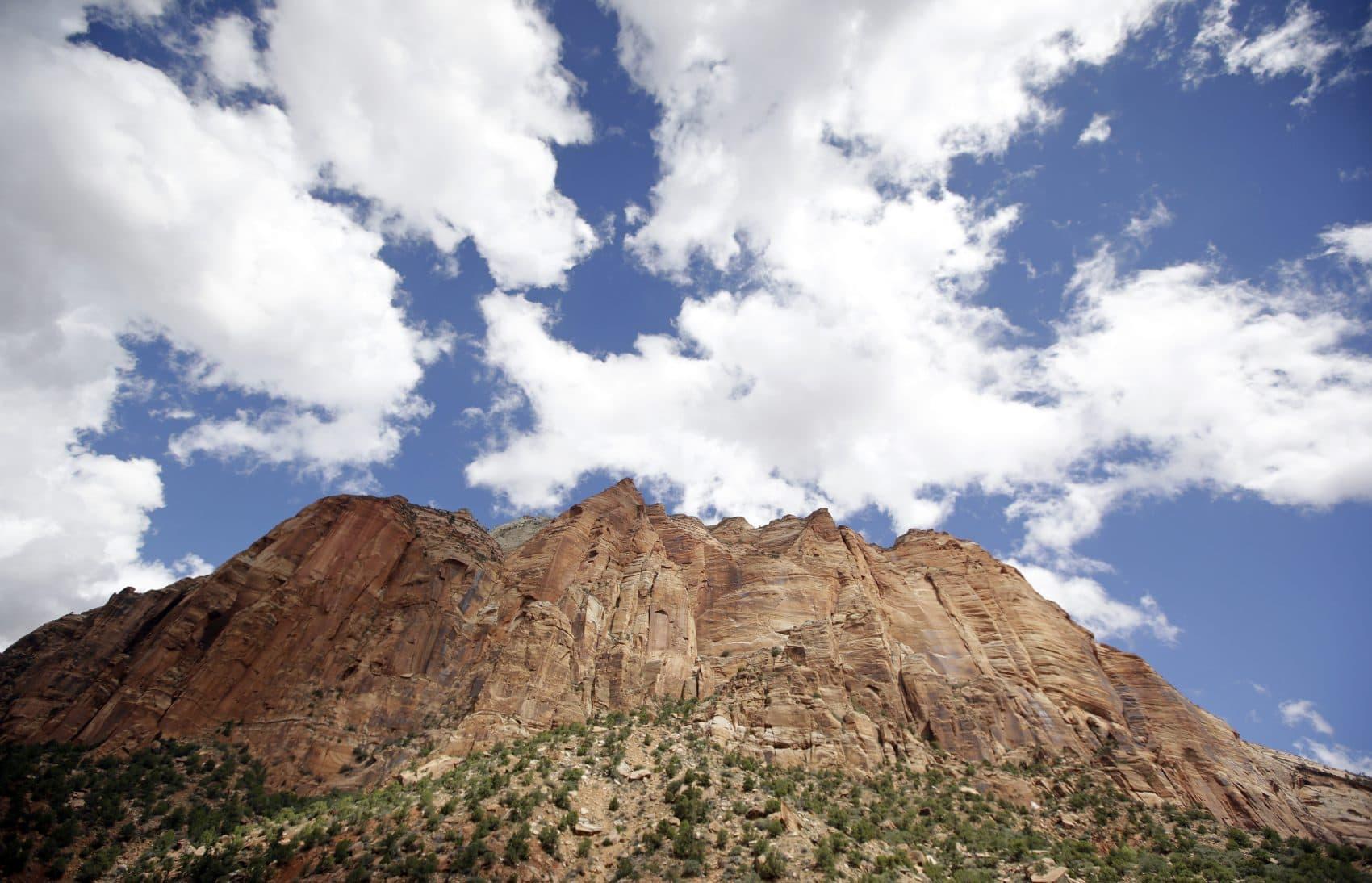Zion National Park, near Springdale, Utah. (Rick Bowmer/AP)