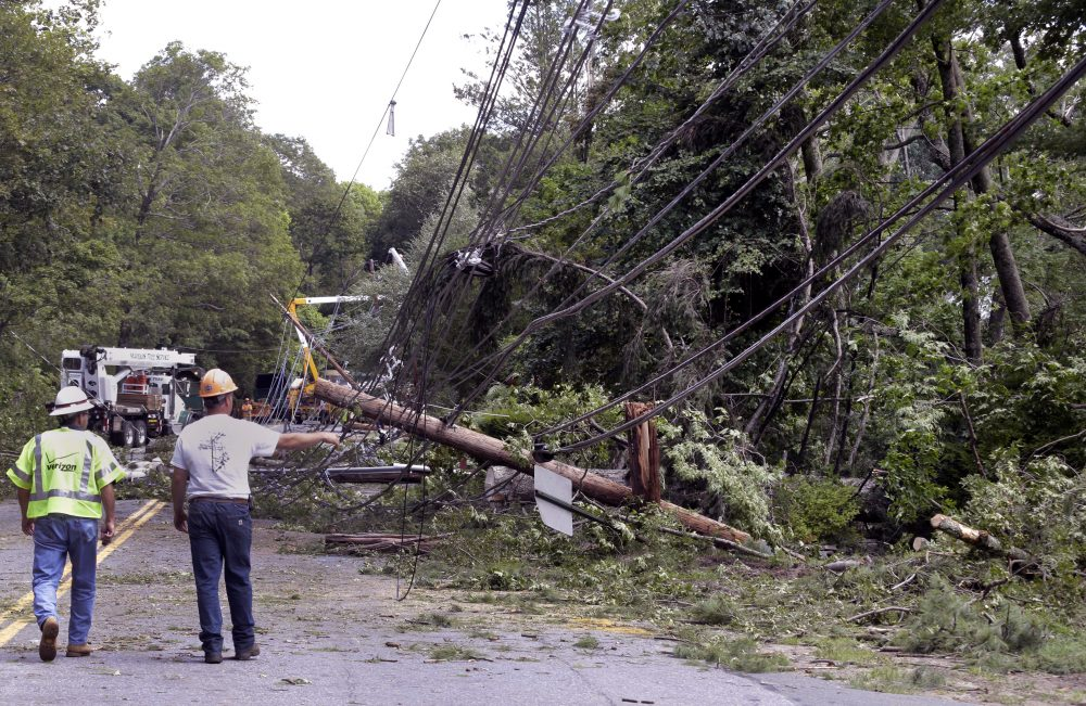 Workers observe downed trees and power lines. There were no reports of injuries or fatalities from Monday's tornado. (Elise Amendola/AP)
