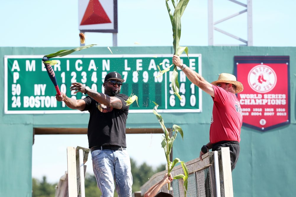 Boston Red Sox designated hitter David Ortiz officially opens The Big Papi Maze with a swing of the bat Tuesday in Sterling, Mass. (Damian Strohmeyer/AP)