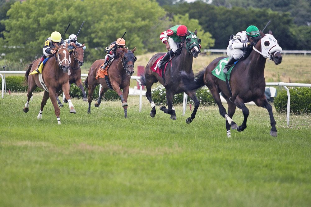 Horse racing at Suffolk Downs on July 9, one of only six days scheduled this year. Facing a drop-off in gambling, Suffolk Downs has announced plans to redevelop the track. (Courtesy of Lauren Owens/The Eye)