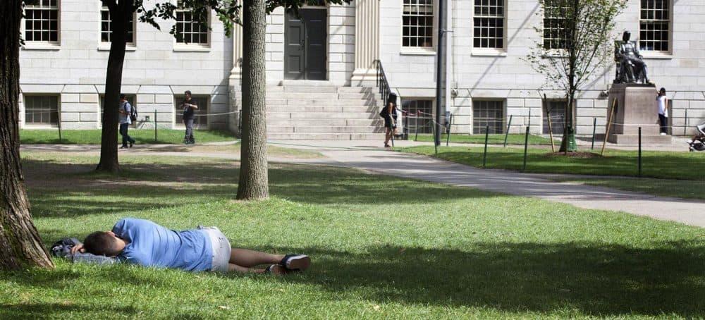 A student naps on Harvard Yard, not far from the statue of John Harvard. (Joe Difazio for WBUR)
