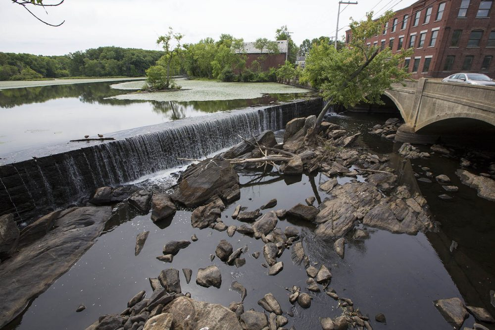 Under the current drought conditions, the Concord River merely trickles over the Faulkner/Talbot Mill Dam. Billerica DPW head Abdul Alkhatib says the smaller rocks at the base of the dam are not usually seen when the river is flowing at normal capacity. (Jesse Costa/WBUR)