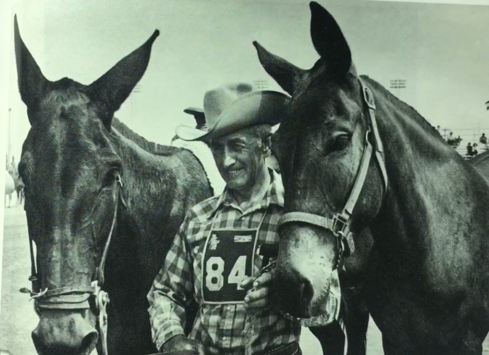 The Great American Horse Race lived up to its name. Well, most of its name. Here's Virl Norton with mules Lord Fauntleroy and Lady Eloise. (Courtesy of Curt Lewis)