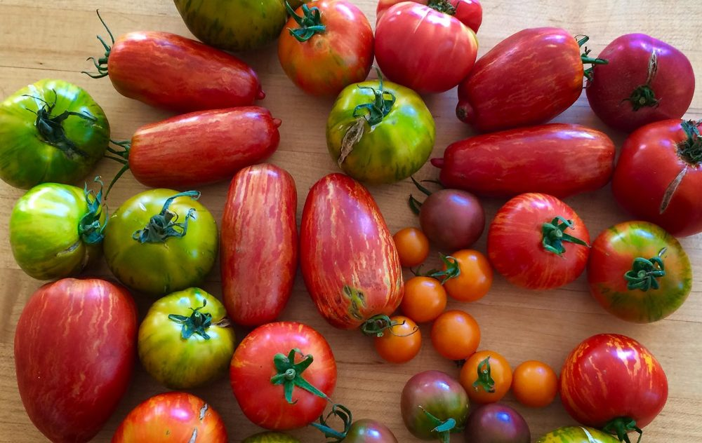 People with a plethora of tomatoes or peppers might have run out of ideas for how to use them. (Kathy Gunst for Here & Now)