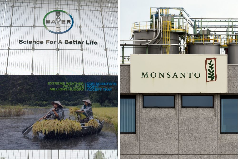 Bayer, best known in the U.S. for its aspirin, announced the deal to acquire Monsanto on Wednesday. (Roberto Pfeil, John Thys/AFP/Getty Images)