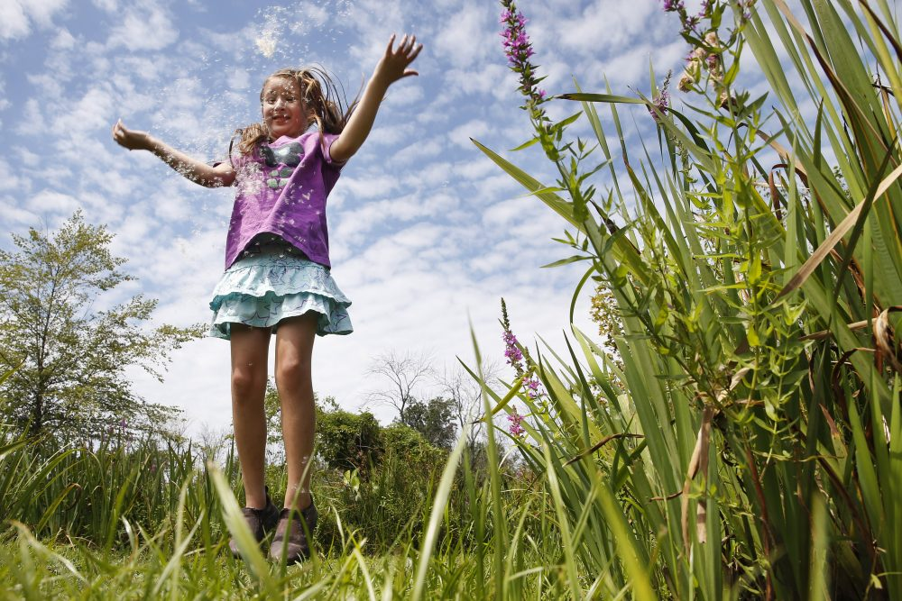 Yalena Leuliette, 7, of Greenbelt, Md., throws seeds from a cattail plant up in the air as she plays while visiting the Kenilworth Aquatic Gardens in northeast Washington, on Sunday, Aug. 9, 2015. Leuliette visits the public garden with her parents a few times a year.  (Jacquelyn Martin/AP)