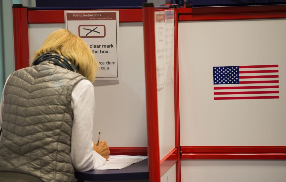 A woman votes at an absentee voting station in Arlington, Va., on Oct. 12, 2016. (Andrew Caballero-Reynolds/Getty Images)