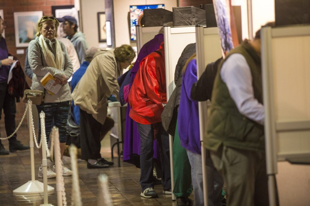 Voters make their choices on the first day of early voting Monday at Boston City Hall. (Jesse Costa/WBUR)