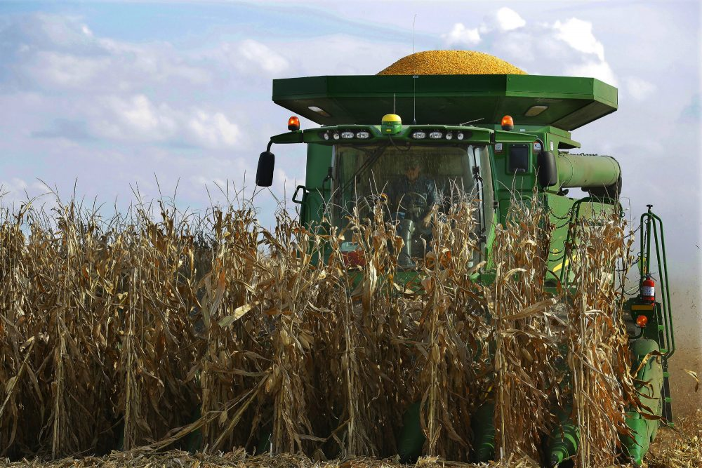 Everybody eats, so why aren't the presidential nominees talking about how they would feed a growing population? Rich Barlow weighs in on big agriculture, small farms and the food dilemma facing America and the world. Pictured: Central Illinois farmers harvest their corn crops Wednesday, Sept. 14, 2016, in Loami, Ill. (Seth Perlman/AP)