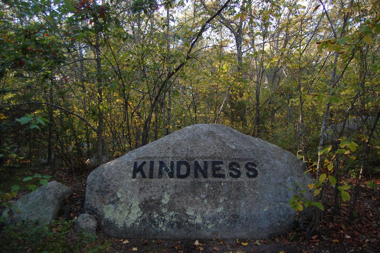 """""""Kindness"""" boulder in Gloucester's Dogtown woods. (Greg Cook/WBUR)"""