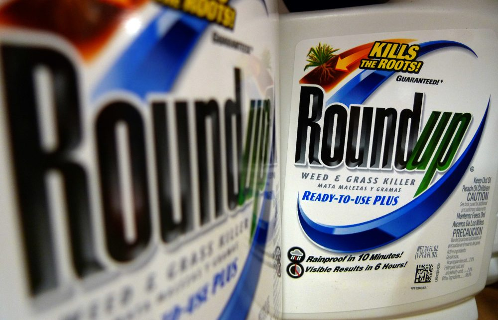 In this June 2011, file photo, bottles of Roundup herbicide are displayed on a store shelf in St. Louis. (Jeff Roberson/AP)