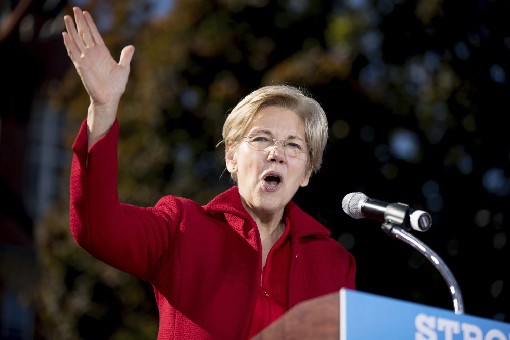 Sen. Elizabeth Warren speaks at a campaign rally for Hillary Clinton in New Hampshire in October. (Andrew Harnik/AP)