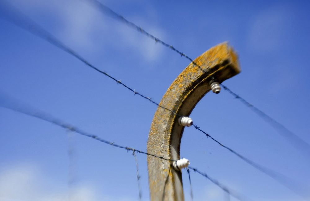 We must put our ears to the ground, writes Julie Lindahl, and listen for the quiet whisperings of the dead. Pictured: Barbed wire on the grounds of the memorial site of the former Neuengamme concentration camp in Hamburg, Germany.(Axel Heimken/AP)