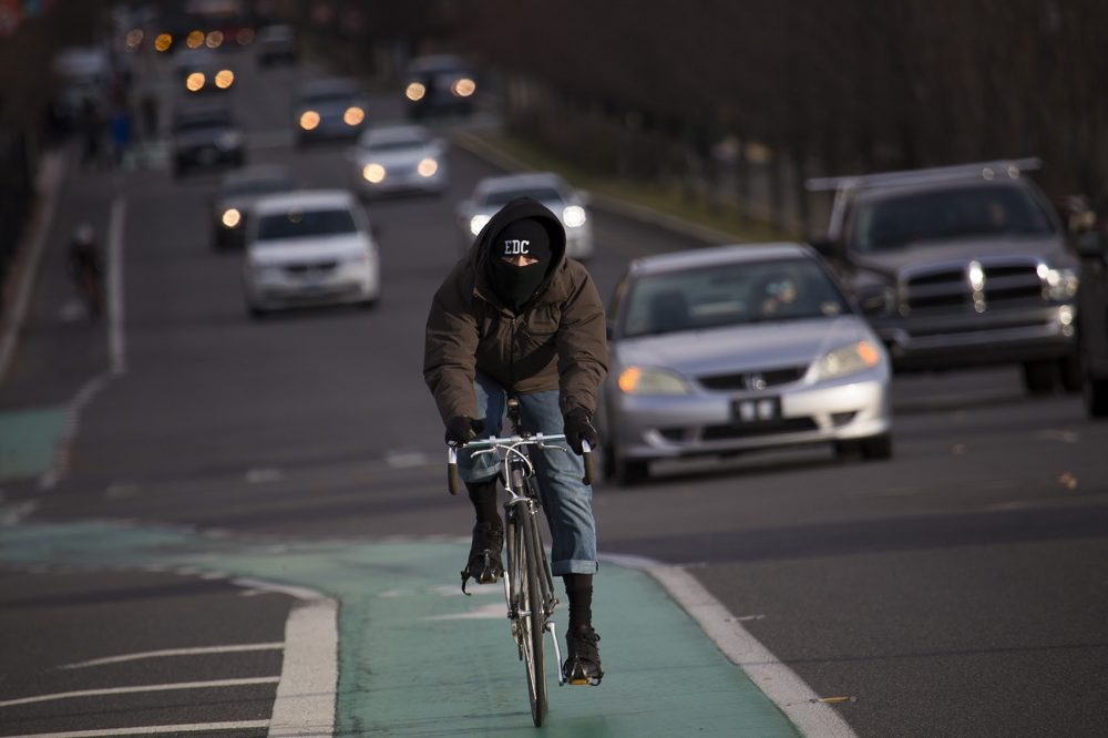 A cyclist battles the cold as he rides down Commonwealth Avenue on Thursday. (Jesse Costa/WBUR)