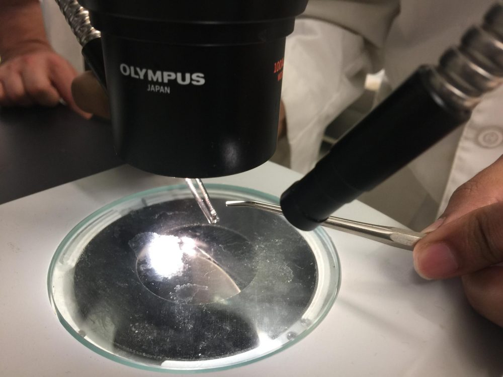 University of Texas at San Antonio engineers are working on a drug delivery device the size of the head of a pen. (Wendy Rigby/Texas Public Radio)