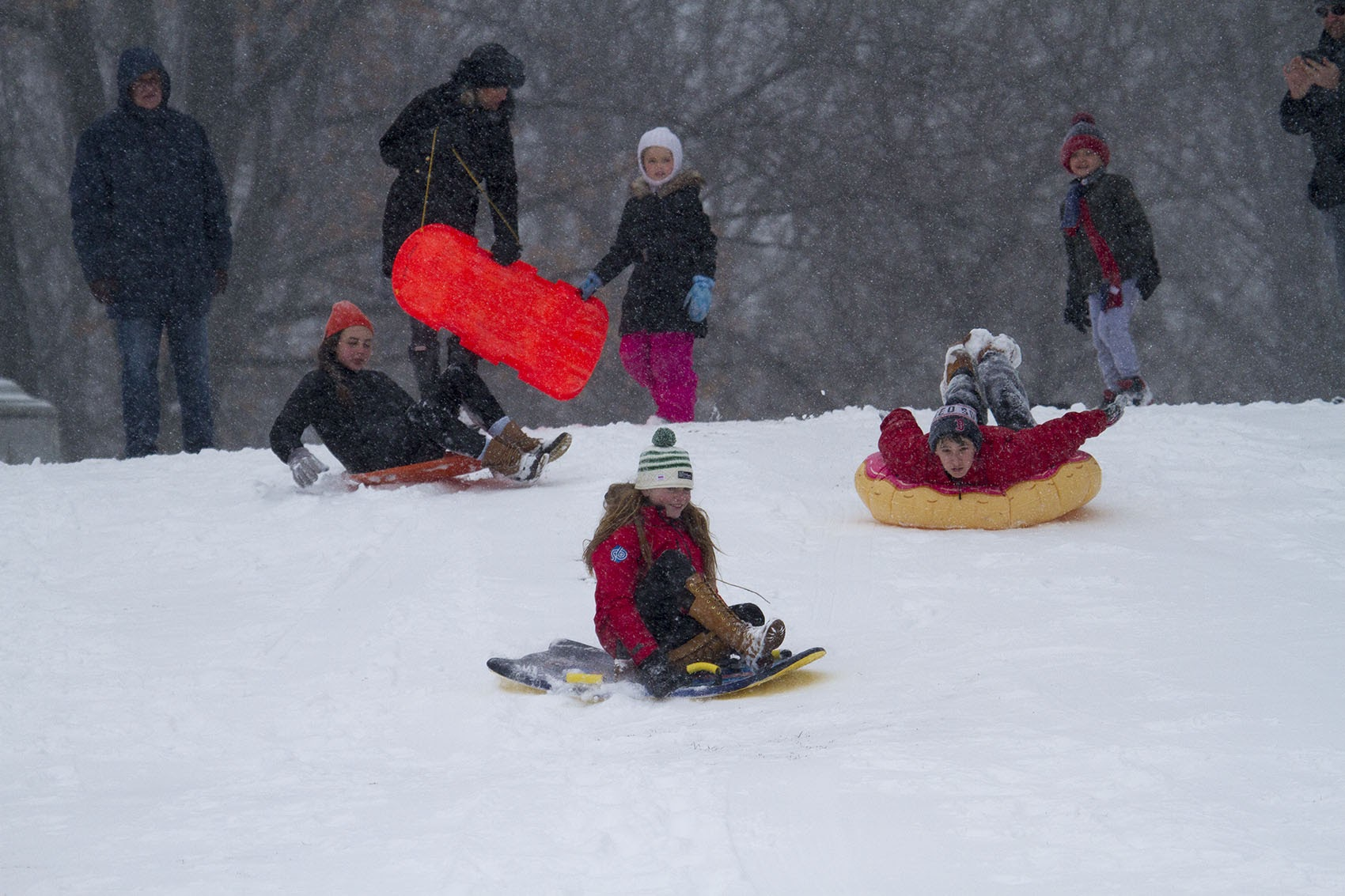 Kids sled down the hill at Boston Common during a snowstorm in 2017. (Jesse Costa/WBUR)