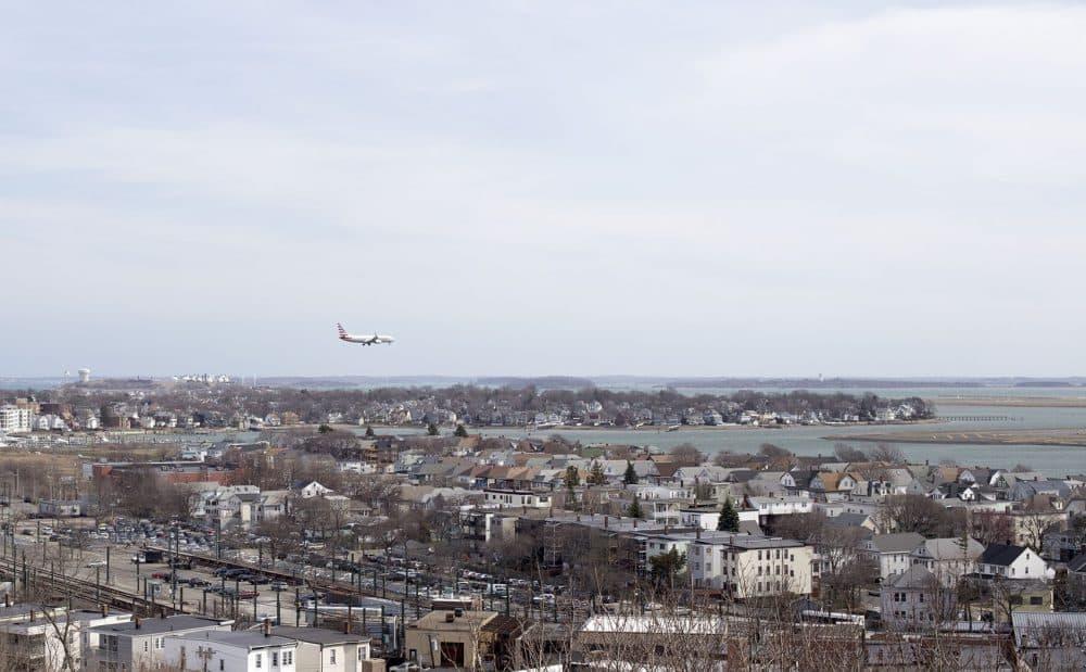 A plane lands at Logan Airport. (Joe Difazio for WBUR)