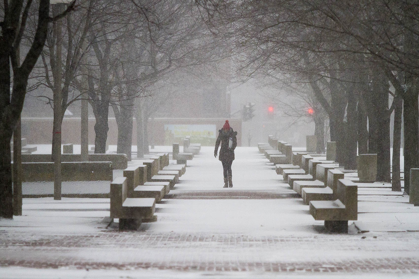 A woman walked through City Hall Plaza during Tuesday's storm. (Jesse Costa/WBUR)