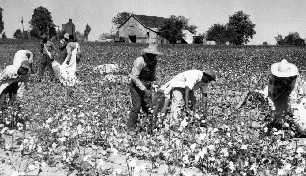 HBCUs were not created by or for the American South alone, writes Zine Magubane. They were financed by Boston industrialists and worked to export Jim Crow education to Africa. Pictured: The Booker T. Washington Memorial birthplace farm, Sept. 30, 1953.  (AP Photo)