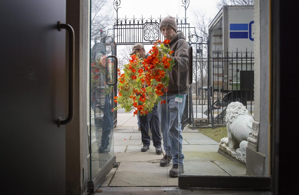 Corey Roche, 21, leads a group of four staffers carrying a string of nasturtiums through a doorway into the Gardner Museum. (Robin Lubbock/WBUR)
