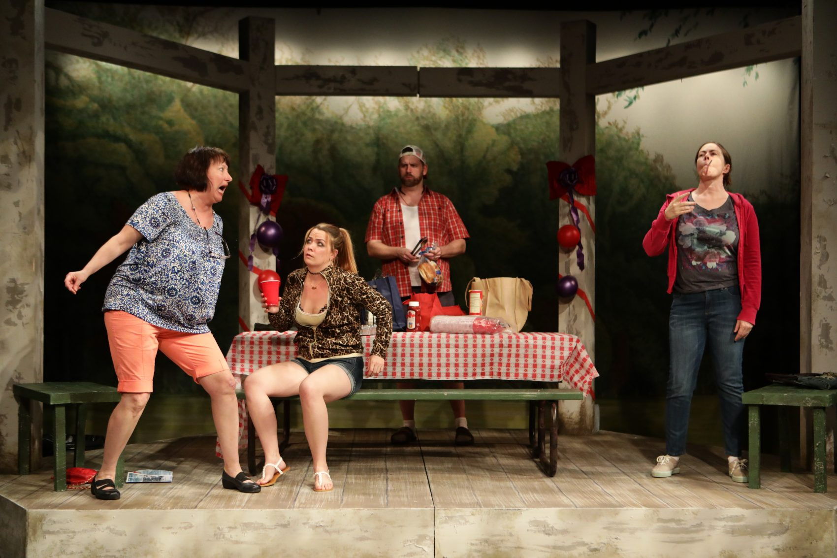 "Adrianne Krstansky, Sarah Elizabeth Bedard, Bryan T. Donovan and Christine Power in ""Barbecue."" (Courtesy Mark S. Howard)"