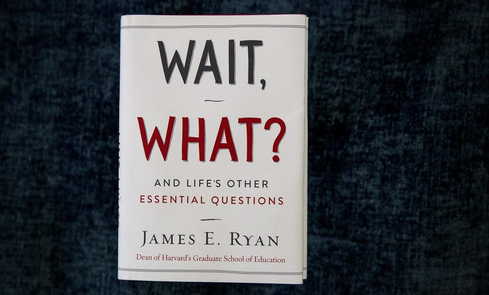"James Ryan's ""Wait, What?"" (Robin Lubbock/WBUR)"