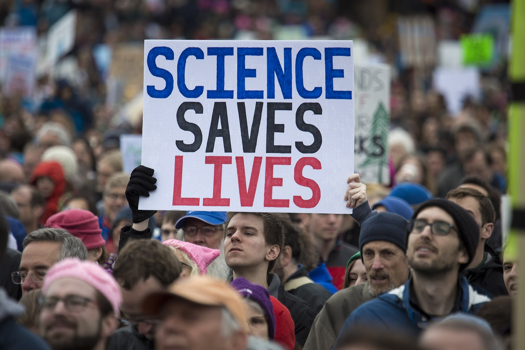 Thousands gathered on Boston Common Saturday for the March For Science. (Jesse Costa/WBUR)