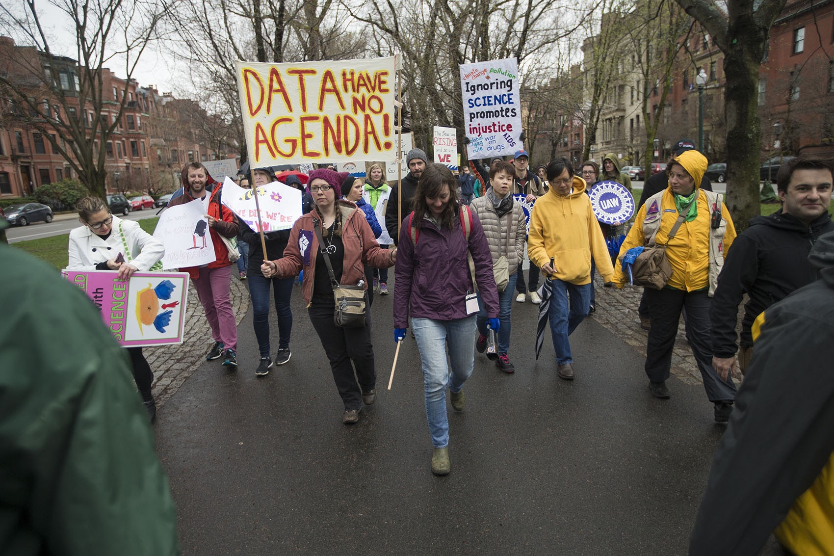 Marchers from Harvard and MIT head down the Commonwealth Avenue Mall toward Boston Common. (Jesse Costa/WBUR)