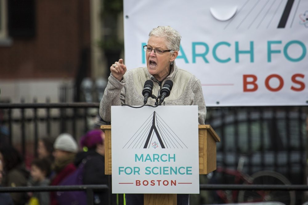 Former Environmental Protection Agency Administrator and Boston-native Gina McCarthy spoke to the crowd on Boston Common Saturday. (Jesse Costa/WBUR)