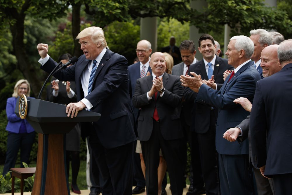 President Donald Trump, accompanied by GOP House members, speaks after the House pushed through a health care bill, in the Rose Garden of the White House on Thursday in Washington. (Evan Vucci/AP)