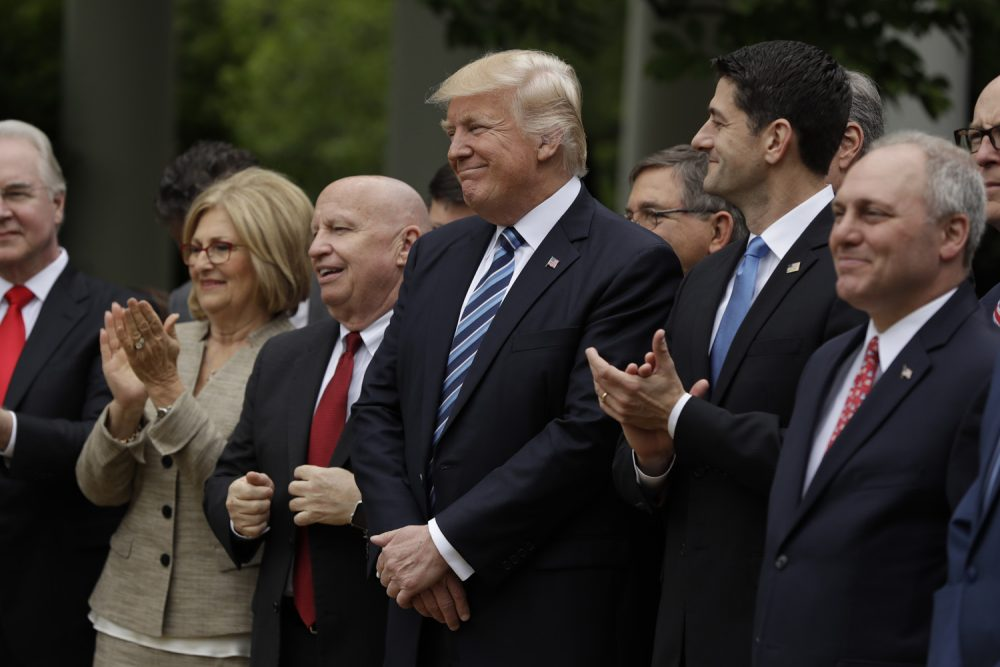 President Donald Trump, flanked by House Ways and Means Committee Chairman Rep. Kevin Brady, R-Texas, and House Speaker Paul Ryan of Wis., are seen  in the Rose Garden of the White House in Washington. (Evan Vucci/AP)