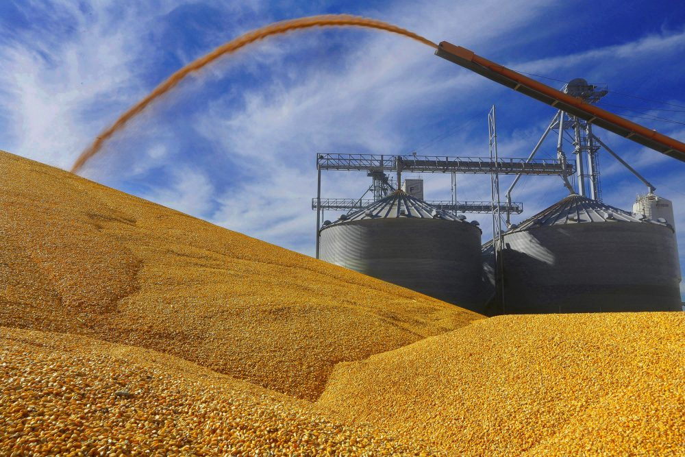 Our lawmakers should summon their inner Abraham Lincoln and pass a 21st-century Homestead Act, writes Rich Barlow. Pictured: Farmers deposit harvested corn on the ground outside a full grain elevator in Virginia, Ill. in 2015. (Seth Perlman/AP)