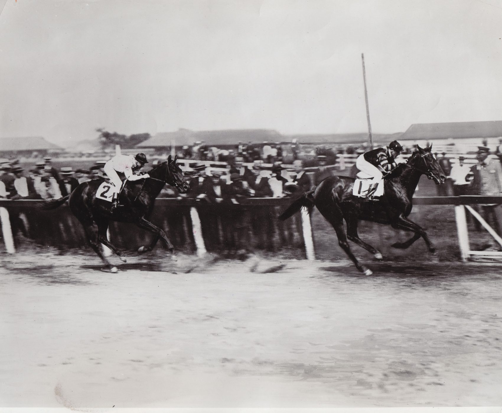 Man o'War was the favorite in every race he started in his career. (Courtesy Keeneland Library)