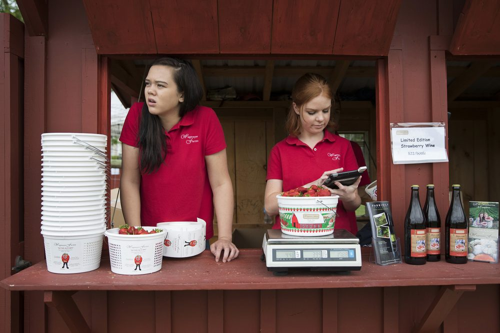 Vanishing Summer Jobs For Teens On Point
