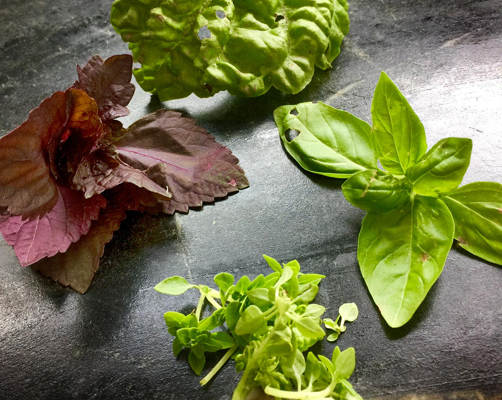 6 Basil Recipes To Help You Bring Out The Best Of Summer