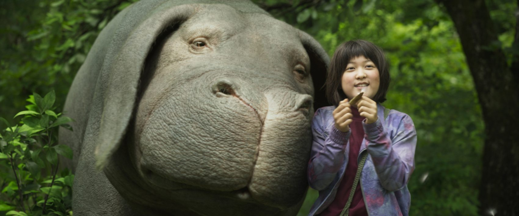 "A production still from the movie ""Okja."" (Netflix)"