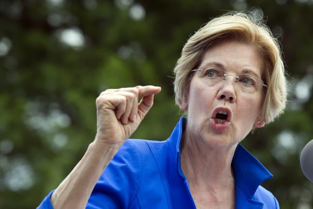 Sen. Elizabeth Warren, D-Mass. speaks in a park in Berryville, Va. Monday, where Congressional Democrats unveiled their new agenda. (Cliff Owen/AP)